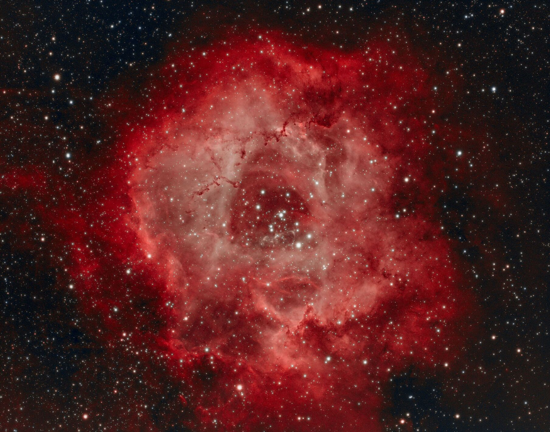 NGC 2237 with QHY695A HOO