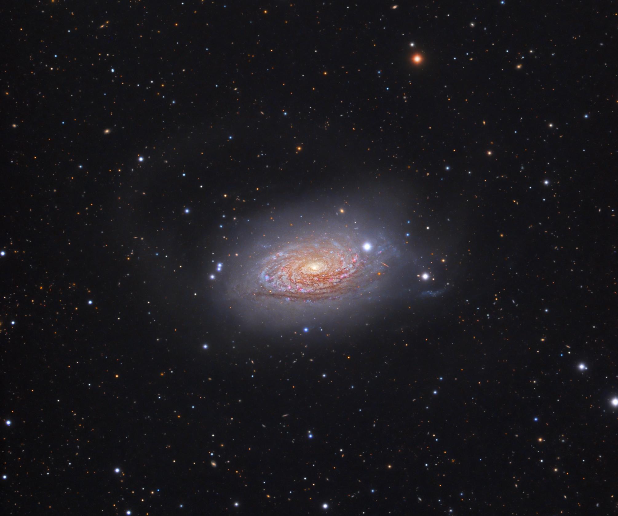 M63_koniec   Telescope: TEC140 f/5.2 Camera: QHY695A Mount: Paramount MyT Exposure: Exposure: 31h (Ha,L,R,G,B) L 115x600s, R 24x300s , G 24x300s, B 24x300s, Ha 17x1200s (binx1) Date and place: 05.2019, Observatory E-EyE, Fregenal de la Sierra, Spain