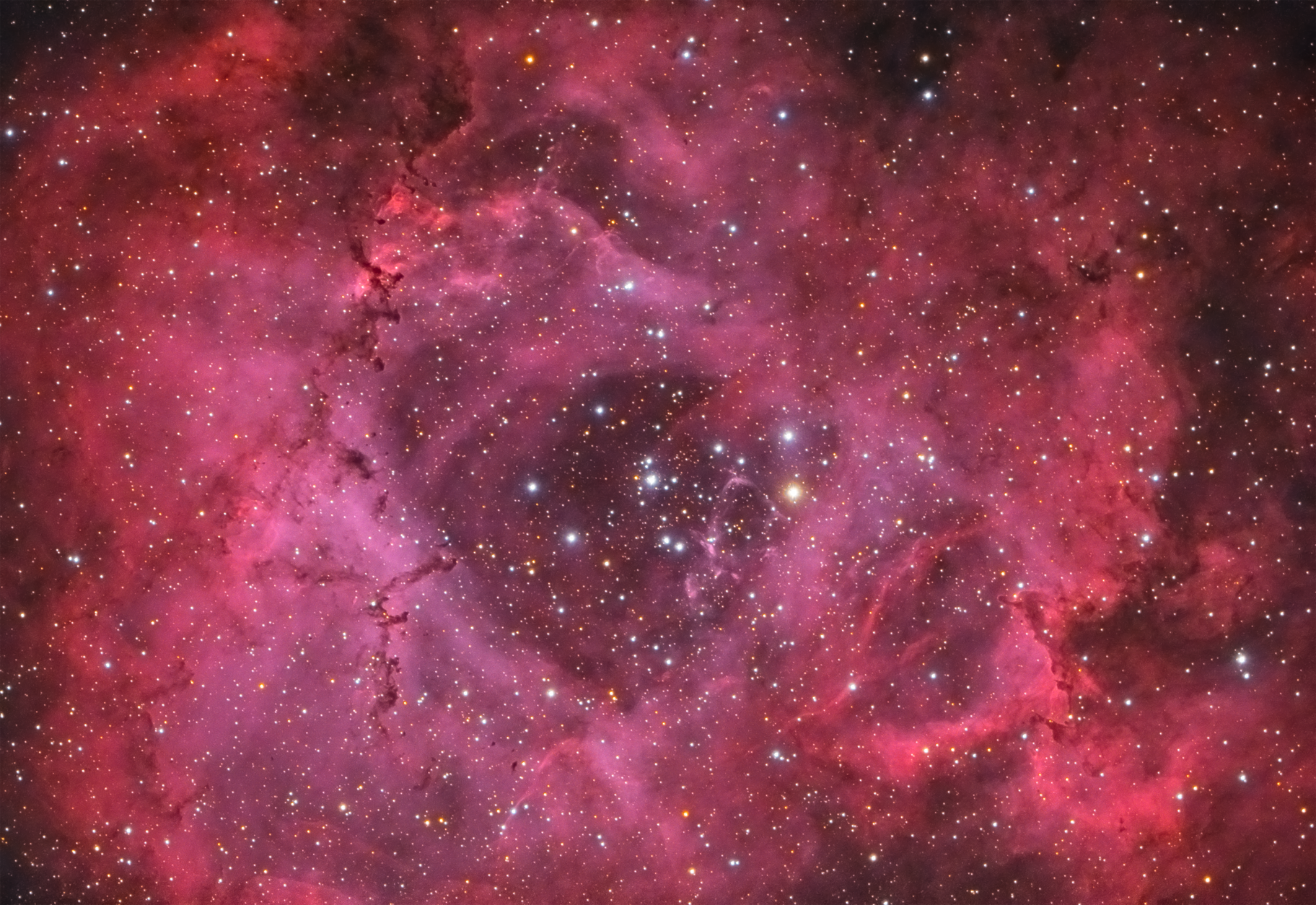 NGC 2244 The Heart of the Rosette